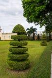 Decoração do jardim da árvore do corte no templo asiático fotos de stock