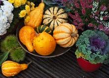 Decoração do jardim do outono foto de stock