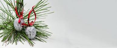 Decoração do Natal com um ramo verde do pinho e porcas da prata com fitas vermelhas para o conceito do cartão dos desejos Fotografia de Stock Royalty Free