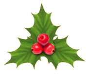 Decoração do Natal da baga do azevinho isolada Foto de Stock Royalty Free
