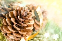 Decoração do Natal da pele-árvore e dos cones Foto de Stock Royalty Free