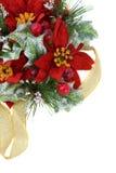 Decoração do Natal do Poinsettia com fita do ouro Fotos de Stock Royalty Free