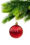 Decoração do Natal isolada Imagem de Stock Royalty Free