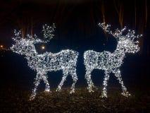 Decoração do Natal nas luzes no parque da cidade imagens de stock royalty free