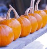 Decoração do outono imagens de stock