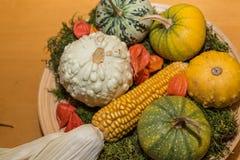 Decoração do outono com cabaças decorativas fotografia de stock royalty free
