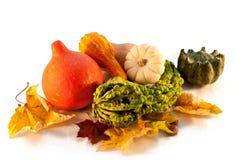 Decoração do outono da abóbora e das folhas Imagens de Stock Royalty Free