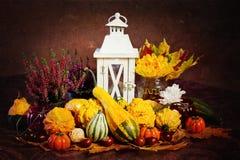 Decoração do outono, estilo do vintage Fotografia de Stock