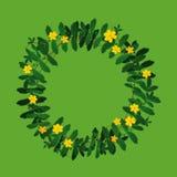 Decoração do quadro da beira da grinalda da flor da planta no verde Ilustração do Vetor