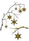 decoração dourada do Natal Fotos de Stock Royalty Free