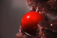 Decoração elegante do Natal na cor do coral de vida imagem de stock