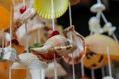 Decoração feita de shell coloridos do mar Imagens de Stock Royalty Free
