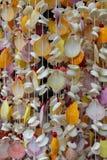 Decoração feita de shell coloridos no thred Fotos de Stock