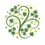 Decoração floral ilustração royalty free