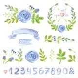Decoração floral azul da aquarela ajustada com números ilustração do vetor