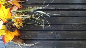 Decoração floral do outono com fundo de madeira Imagem de Stock