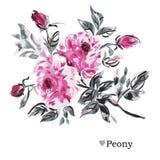 Decoração floral tirada mão Imagem de Stock