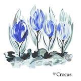 Decoração floral tirada mão Imagens de Stock