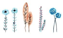 Decoração floral tirada mão Imagem de Stock Royalty Free