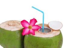 Decoração fresca da bebida do coco com as flores no fundo branco Fotografia de Stock