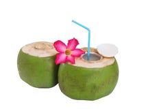 Decoração fresca da bebida do coco com as flores no fundo branco Foto de Stock