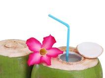 Decoração fresca da bebida do coco com as flores no fundo branco Imagem de Stock