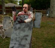 Decoração a Halloween Imagens de Stock Royalty Free