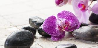 A decoração mineral com seixos pretos e a orquídea para termas centram-se Imagens de Stock