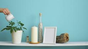 Decoração moderna da sala com modelo da moldura para retrato Prateleira branca contra a parede pastel de turquesa com vela e ro