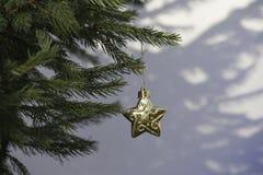 Decoração na árvore de Natal Fotografia de Stock Royalty Free