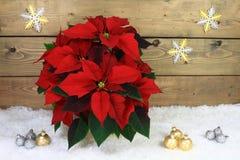 Decoração típica do Natal Imagens de Stock Royalty Free