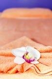 Decoração tailandesa da massagem Imagens de Stock Royalty Free