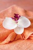 Decoração tailandesa da massagem Foto de Stock