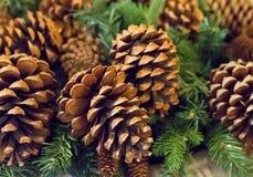 Decoração tradicional das decorações do Natal do ano novo um grande cone de abeto no fundo Fotos de Stock Royalty Free