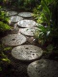 Decoração tropical da paisagem do jardim do trajeto de pedra Fotos de Stock Royalty Free