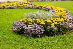 Decoração urbana da flor Imagens de Stock