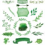 Decoração verde da aquarela, ramos Jogo floral ilustração royalty free