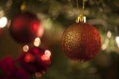 Decoração vermelha da bola da árvore de Natal Fotografia de Stock Royalty Free
