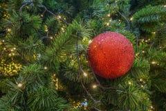 Decoração vermelha da bola na árvore de Natal fotografia de stock royalty free