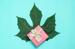 Decoração vermelha da caixa de presente com folha verde Imagens de Stock Royalty Free