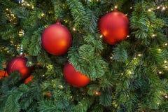 Decoração vermelha das bolas na árvore de Natal fotos de stock royalty free