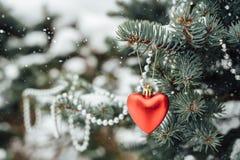Decoração vermelha do Natal do coração no ramo de árvore Fotos de Stock Royalty Free