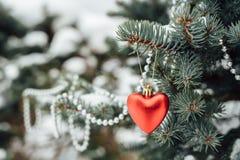 Decoração vermelha do Natal do coração no ramo de árvore Imagem de Stock