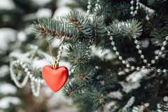 Decoração vermelha do Natal do coração no ramo de árvore Imagens de Stock Royalty Free