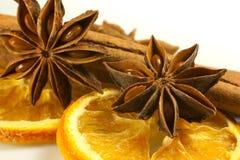 Decorações com frutos secos Fotografia de Stock Royalty Free