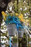 Decorações com os baldes de suspensão com os narcisos amarelos amarelos na parada tradicional Bloemencorso das flores de Noordwij Fotos de Stock