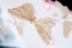 Decorações da borboleta fotografia de stock royalty free