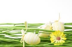 Decorações de Easter Foto de Stock
