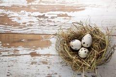 Decorações de Easter Ovos nos ninhos na madeira Foto de Stock Royalty Free