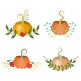 Decorações do feriado das abóboras Imagens de Stock Royalty Free